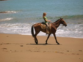beach horse back riding osa peninsula costa rica